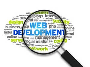 Web Development (Custom Web Application)